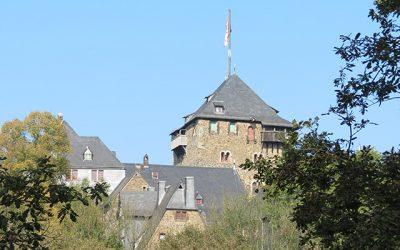 AfD begrüßt Sanierungskonzept für Schloss Burg