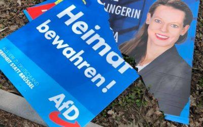 Post Notre Dame und Wahlmanipulation zum Nachteil der AFD von Seiten antidemokratischer Kräfte